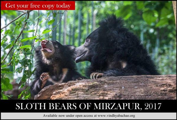 Sloth Bear Report Mirzapur-Download Report